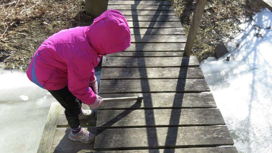 Little Wren tries out the musical bridge at the Wolf Creek Falls Preserve in Knox. (Herb Terns / Times Union)