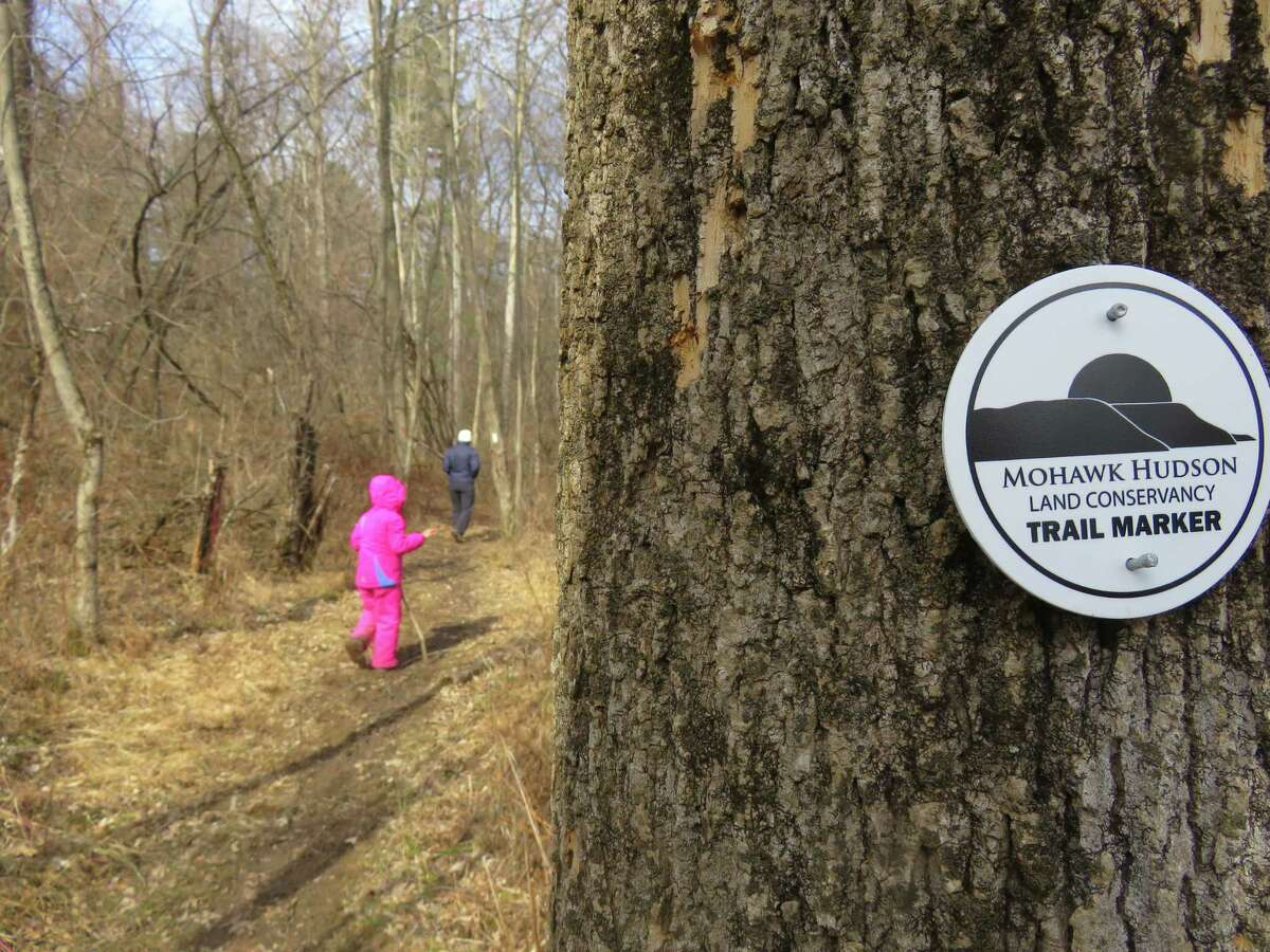 Trails in the Mohawk Hudson Land Conservancy's Nature Passport, like this one at the Normanskill West Preserve, are family-friendly. (Herb Terns / Times Union)