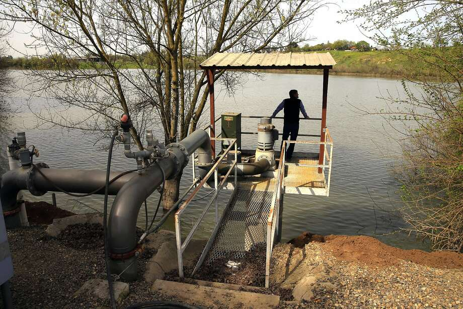 Michael Frantz owner of Frantz Wholesale Nursery looks over their irrigation holding pond that has been filled to capacity by the Tuolumne River in Hickman, Ca. on Thurs. March 16, 2017. Frantz is a member of the board of directors on the Turlock Irrigation District that opposes the state's proposal to keep more water flowing in the Tuolumne River and other California rivers to help the fish and their natural habitat but he and his district support an alternative plan that preserves water for agriculture while still protecting fish. Photo: Michael Macor, The Chronicle