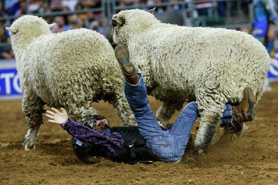 Claire Schneider, 5, hits the dirt after mutton bustin' during round one of Super Series IV at the Houston Livestock Show and Rodeo Thursday, March 16. Photo: Michael Ciaglo, Houston Chronicle / Michael Ciaglo