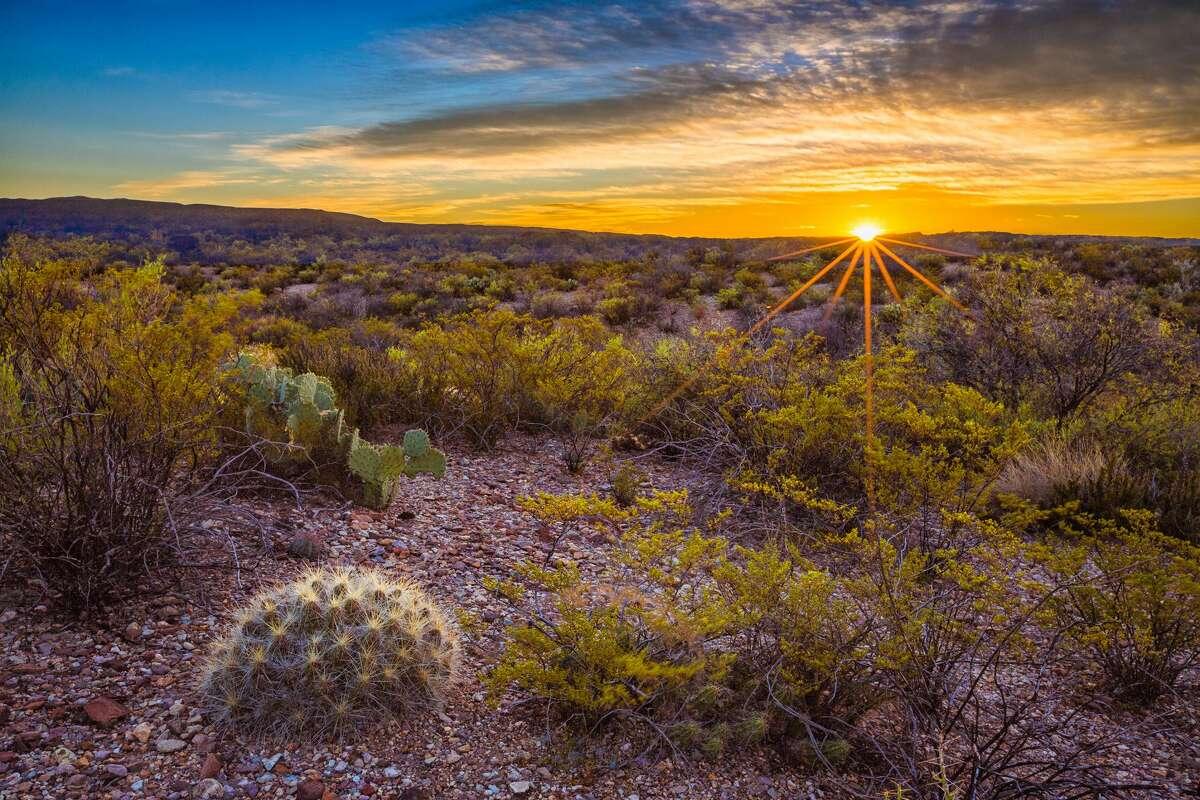Chihuahuan Desert Sunrise Big Bend National Park