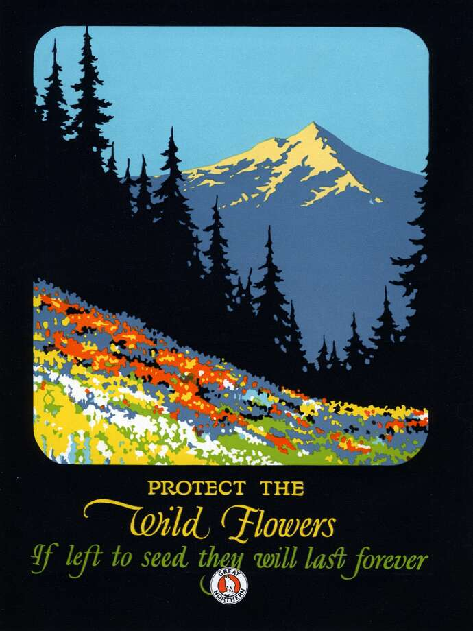 Vintage poster of a wildflower field in the Pacific Northwest, supporting nature conservation (lithograph published by the Great Northern Railway), 1925. Photo: GraphicaArtis/Getty Images