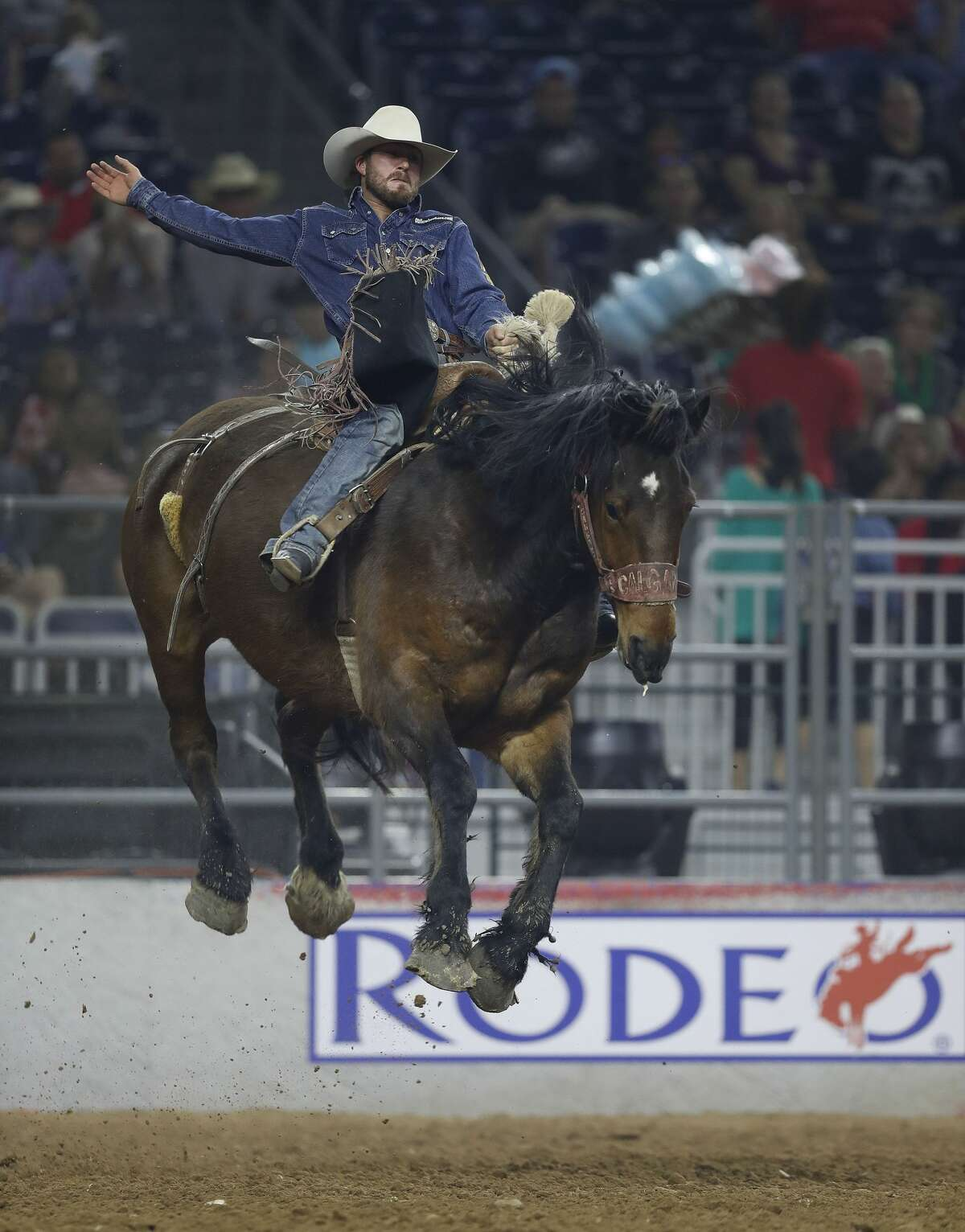 Cort Scheer rides Urgent Delivery in the saddle bronc competition during the Super Series IV, round 2, at NRG Stadium, Friday, March 17, 2017, at the Houston Livestock Show and Rodeo, in Houston. ( Karen Warren / Houston Chronicle )