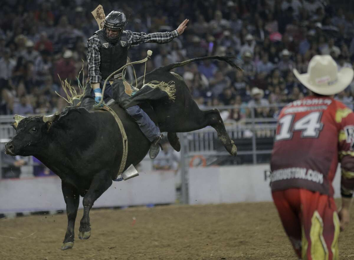 Bull rider Clayton Foltyn rides Lost Highway during the Houston Rodeo on Sunday, March 19, 2017, in Houston. ( Elizabeth Conley / Houston Chronicle )