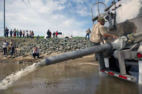 Adam Anton, with the California Department of Fish and Wildlife, releases salmon from a tanker truck into the Feather River at Boyd's Pump Boat Launch Facility in Yuba City. Photo: Chris Kaufman, Special To The Chronicle