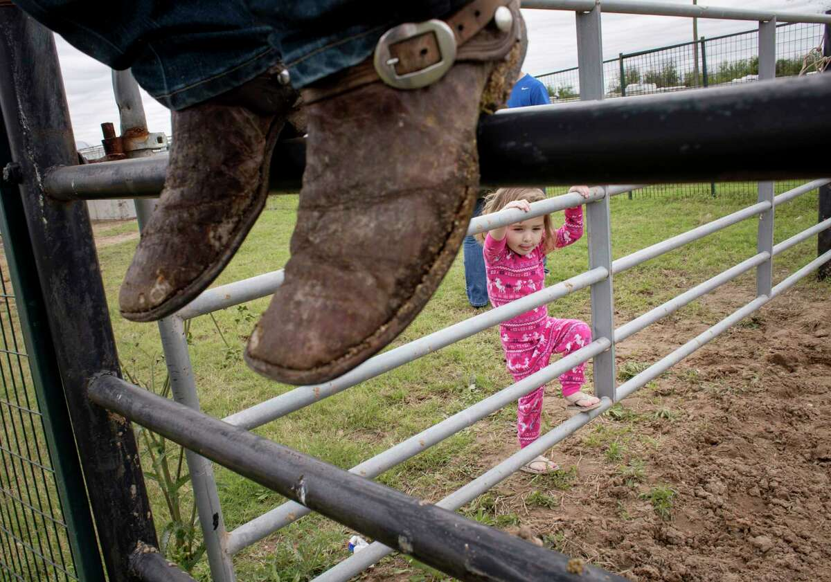 Shyla Davis, the daughter of a roping competitor, watches a horse play at the Rodeo Village, Wednesday, March 8, 2017, in Houston. ( Jon Shapley / Houston Chronicle )