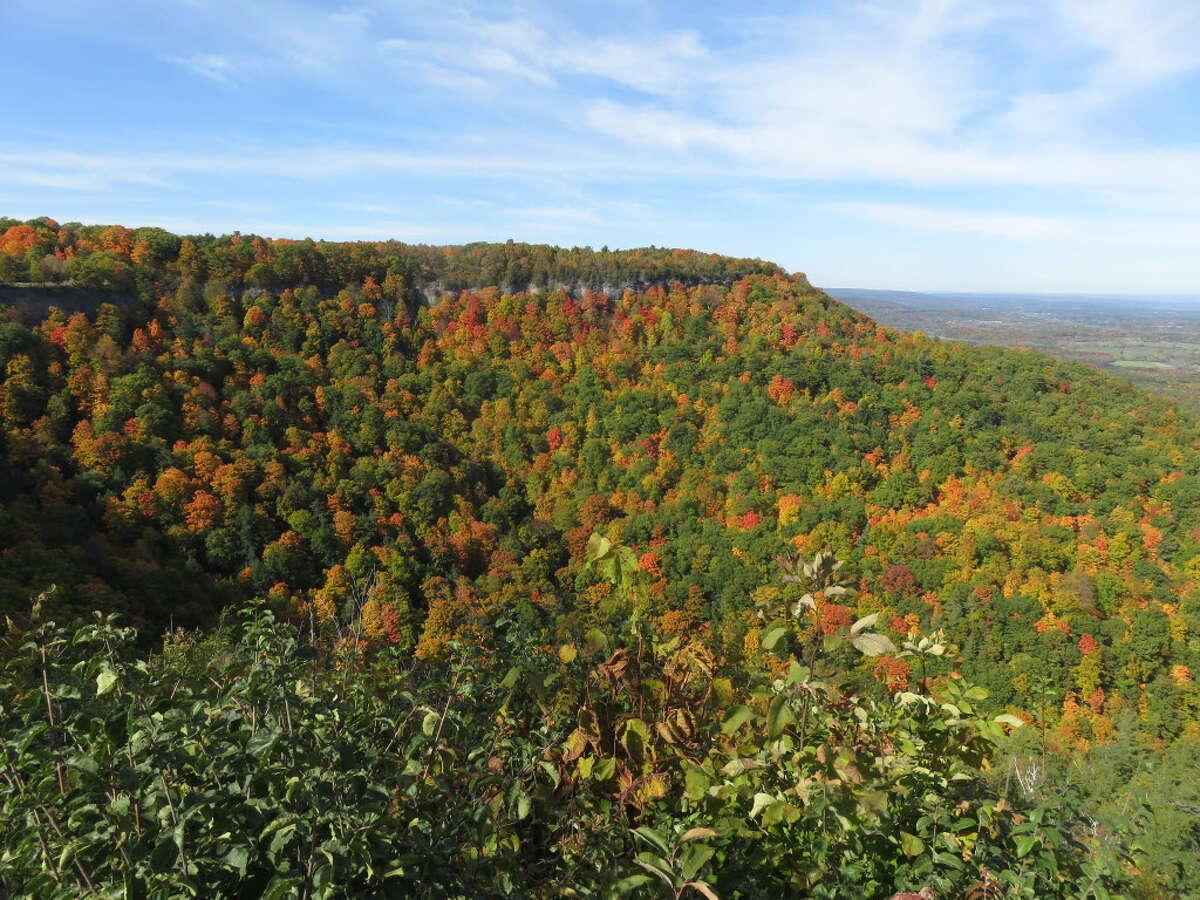 Best park: John Boyd Thacher State Park, Voorheesville.