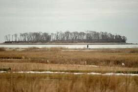 With Charles Island in the distance, a man walks the boardwalk at Silver Sands State Park in Milford, Conn. on Tuesday, March 21, 2017. A bill introduced by State Sen. Gayle Slossberg has passed in committee to halt the planned buildout  of the state park. The bill requires construction plans for the park to pass approval by the Milford Board of Aldermen.