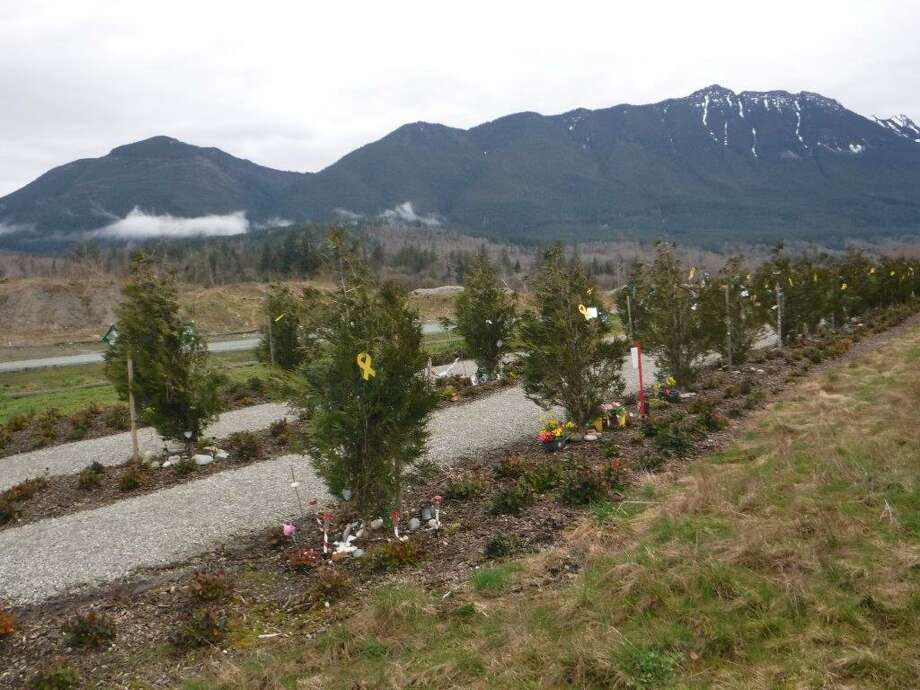The site of the Oso landslide is seen three years after a portion of the hill collapsed March 22, 2014.Forty-three people were killed and nearly 50 homes and other structures were leveled.The slide was the deadliest in U.S. history. Photo: WSDOT