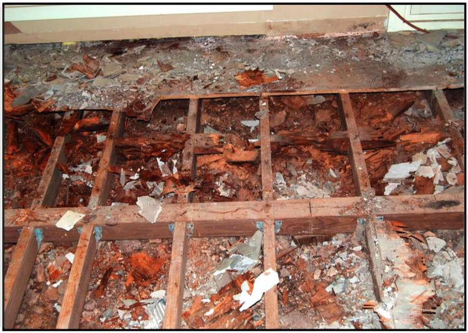 Termite damage to a home in San Antonio. Photo: Cory Heikkila