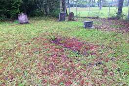 Students cleaned the black side of Tetter Cemetery that was left under poor conditions.