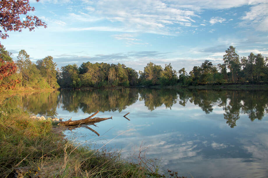 Precinct 4 is opening the Kickerillo-Mischer Preserve. The park spans 80 acres and features the 40-acre Marshall Lake with a 1.7-mile paved trail that circles the water. Photo: Precinct 4
