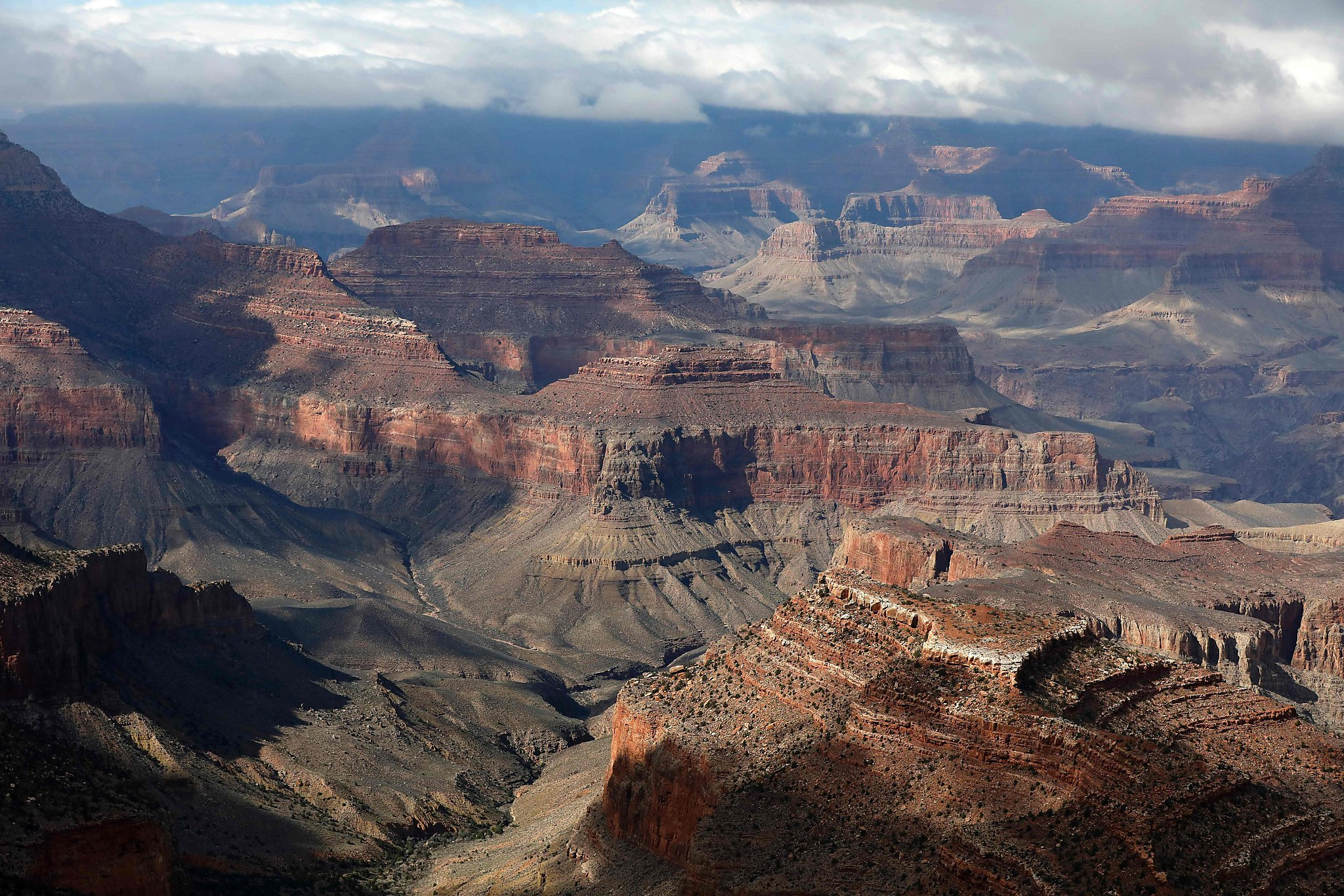 creationism and grand canyon Creationism and the grand canyon article page 2: the colorado plateau.