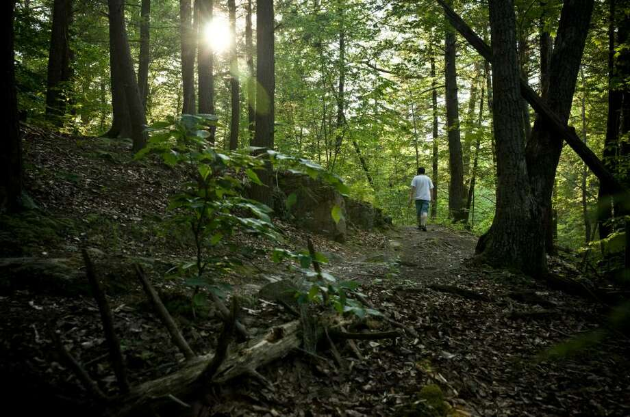 Trout Brook Valley, a 730-acre preserve with access at Bradley Road in Weston, was intended to be the site of golf course and luxury homes before local activists led an effort to purhase the land for preservation. Photo: Contributed Photo / Stamford Advocate Contributed