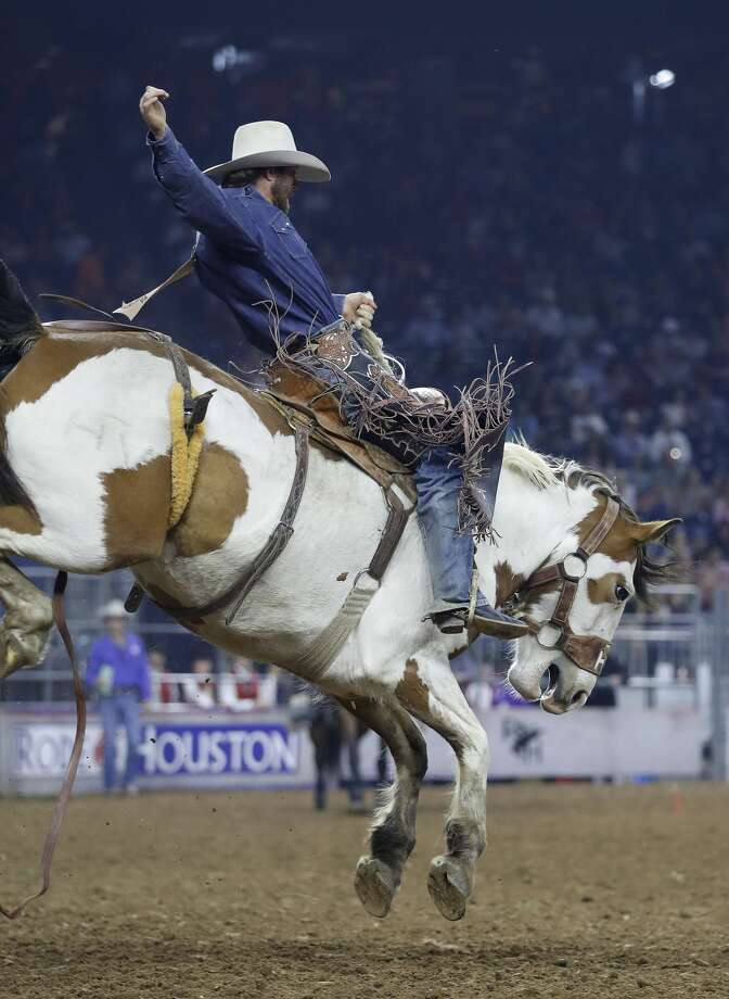 Cort Scheer rides Painted Coast for an 86.00 ride in first place during the saddle bronc competition semifinals at the Houston Livestock Show and Rodeo at NRG Stadium, Wednesday, March 22, 2017, in Houston. ( Karen Warren / Houston Chronicle ) Photo: Karen Warren/Houston Chronicle