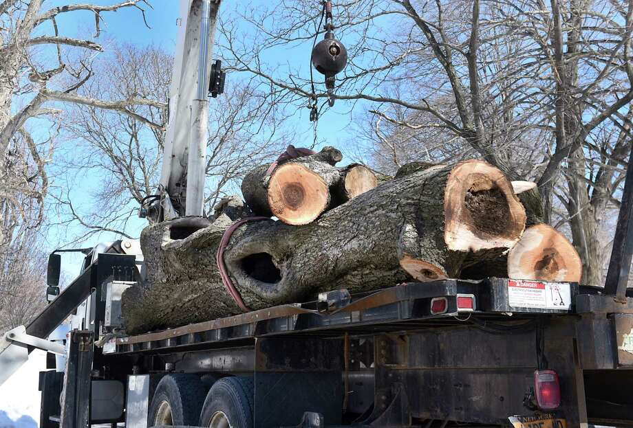 Workers from Davey tree service load a large tree, which they cut, onto the flat bed of a crane truck in Washington Park on Thursday, March 23, 2017 in Albany, N.Y. The tree service was removing rotting trees that were deemed dangerous to the public. ( Lori Van Buren / Times Union) Photo: Lori Van Buren, Albany Times Union