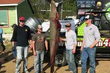 The 9th Annual Toledo Bend Classic was hosted last Saturday and Sunday which is when the Gar Commanders caught a 7-foot-11-inch, 258-pound alligator gar.