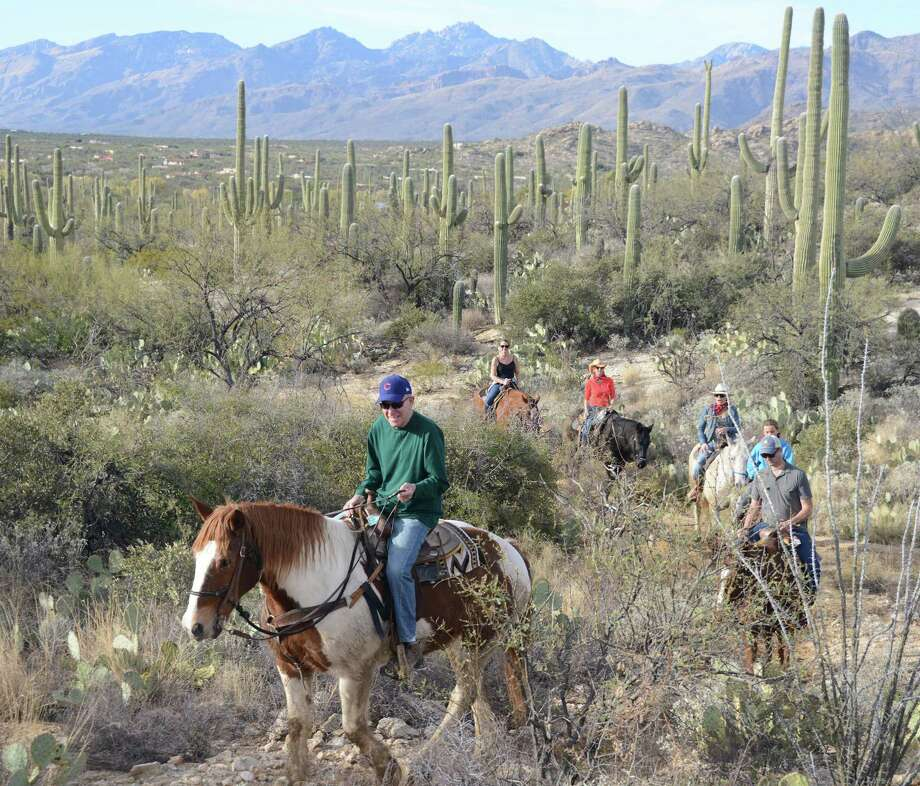 The writer's dad, George Fink, leads the pack on a family trail ride through the desert. Photo: Bill Fink /TNS / Chicago Tribune