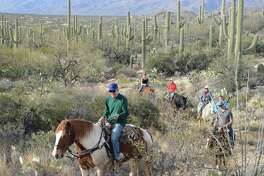 The writer's dad, George Fink, leads the pack on a family trail ride through the desert.