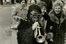 Brian Weber dressed as a gorilla on Powell St. on Dec. 28, 1978.