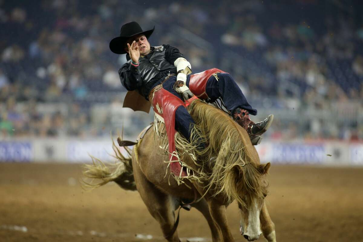 Shane O'Connell participates in the bareback riding at the Houston Livestock Show and Rodeo at NRG Stadium on Thursday, March 23, 2017, in Houston. ( J. Patric Schneider / For the Chronicle )