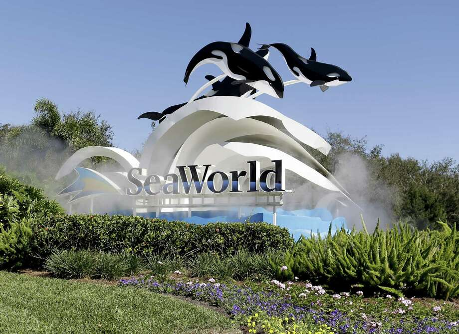 A young girl died after being hit by a vehicle in the parking lot of SeaWorld of San Antonio Sunday night, June, 24, 2018.  Photo: John Raoux /Associated Press / Copyright 2017 The Associated Press. All rights reserved.