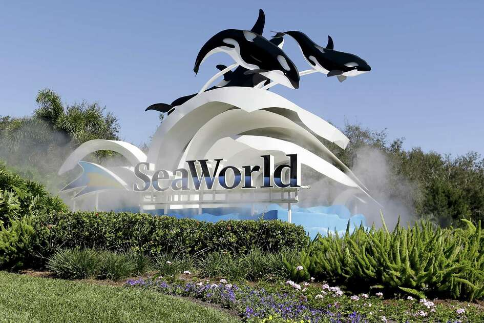 The deal with Zhonghong Group gives SeaWorld a path into the growing Chinese tourism market and a partner with experience in theme-park development there.