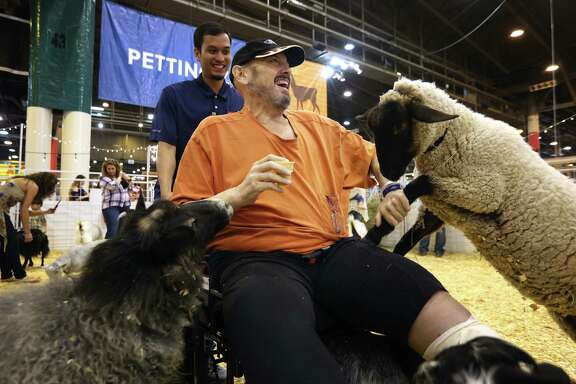 Patrick Wallace fends off friendly livestock in the petting zoo at the rodeo on Friday, March 10. Patients from Quentin Mease Hospital, a rehabilitation facility uses an outing to the Houston Livestock Show and Rodeo as a therapy session as part of the hospitalÕs Community Integration Program. Quentin Mease treats patients suffering from stroke, orthopedic injuries, amputations, traumatic brain damage and spinal cord injuries. Each patient is paired with a staff member who ensures the patient completes therapy goals such as maneuvering through crowds, wheelchair propulsion, transferring from wheelchair to another seat or simply sitting in place for several hours. (Annie Mulligan / Freelance)