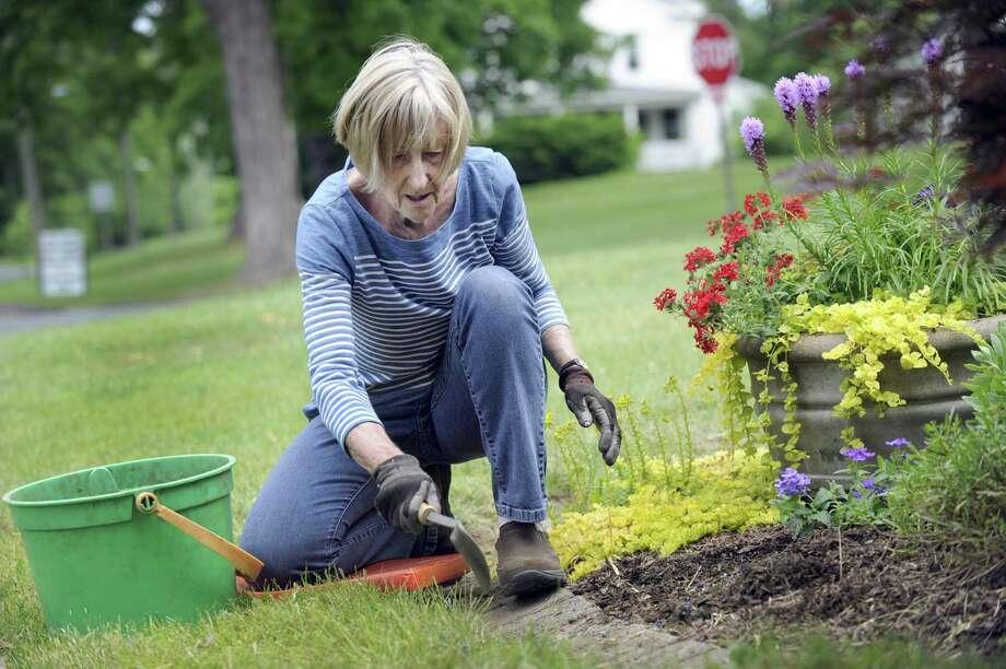 File photo of Jere Hollister, of Bridgewater, working on a garden with the Roxbury/ Bridgewater Garden Club. Photo: Carol Kaliff / Hearst Connecticut Media / The News-Times