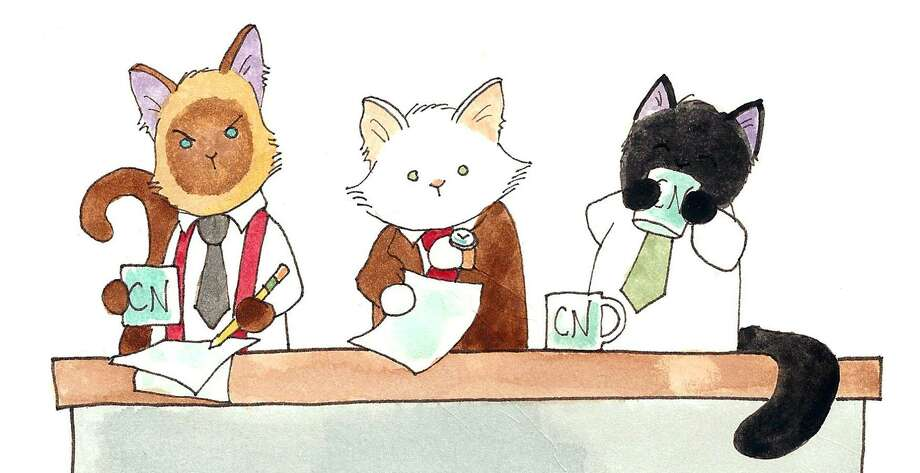 "(Left to right) Elvis, Lupin and Puck, the stars of the webcomic and now newspaper comic ""Breaking Cat News"" by Georgia Dunn. Photo: Courtesy Andrews McMeel Syndication / Courtesy Andrews McMeel Syndication"