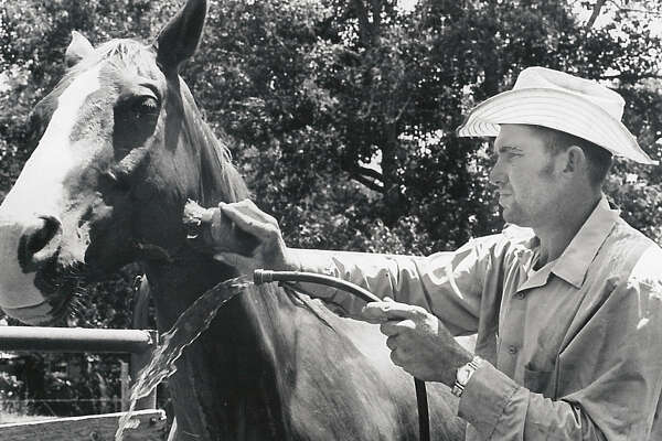 Jimmy Latham of Fairfield washes one of the stock horses in 1977.