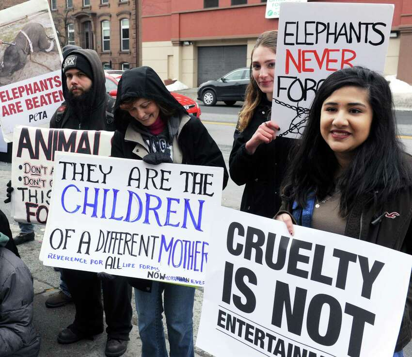 Animal rights activits gather outside the Armory in Albany, N.Y. on March 26, 2017 to protest the use of elephants in a circus going on inside. (Robert Downen/Times Union)