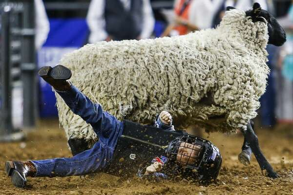 Mutton Busters hit the dirt during an unsuccessful ride during round two of Super Series V at the Houston Livestock Show and Rodeo Monday, March 20, 2017 in Houston. ( Michael Ciaglo / Houston Chronicle )