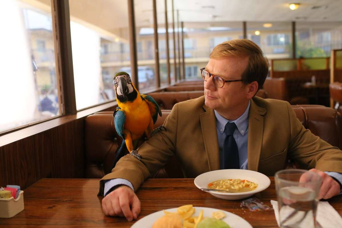 REVIEW This dark comedy follows the misadventures of Forrest MacNeil professional reviewer as he reviews life experiences. The critically acclaimed series comes to an end after a short third season on Thursday, March 30th on Comedy Central.