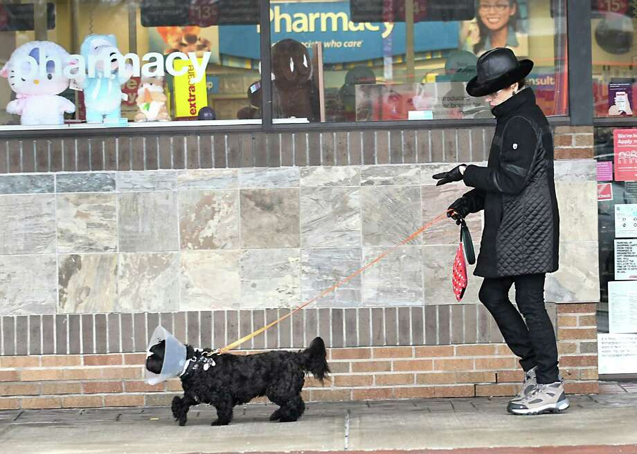 "Bernadene Novak of Voorheesville walks her dog ""Cruise"" at Stuyvesant Plaza on Tuesday, March 28, 2017 in Albany, N.Y.  Lori Van Buren / Times Union) Photo: Lori Van Buren / 20040081A"