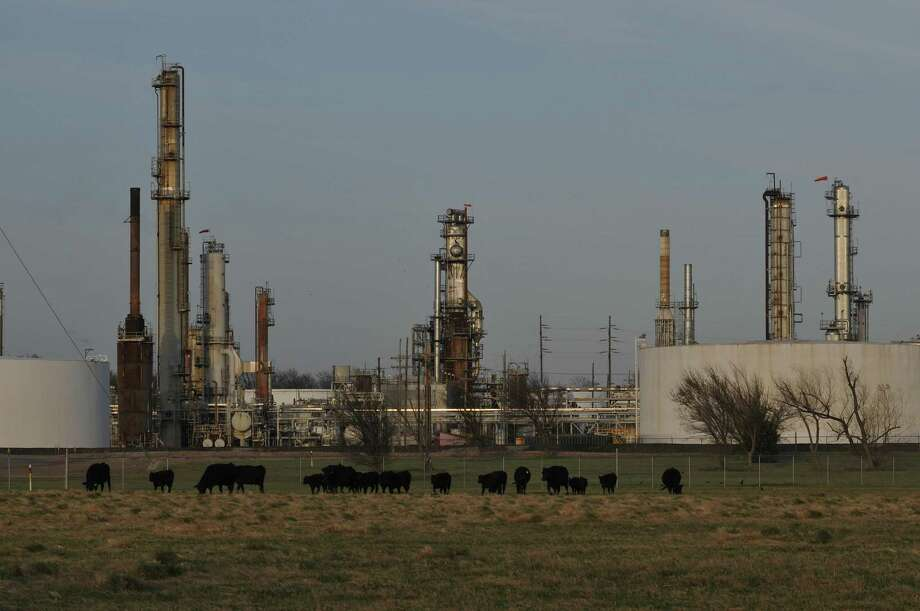 Cattle graze in front of a refinery owned by CVR Energy in Wynnewood, Okla. Refineries processed 16.2 million barrels a day of crude last week, up 425,000 barrels from the prior week, the report showed. It was the biggest weekly increase since June 2014. Refineries operated at 89.3 percent of capacity, up 1.9 percentage points from the prior week, and the highest since January. Photo: Nick Oxford /New York Times / NYTNS