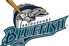 The Bridgeport City Council is being asked to approve a one year contract extension to keep the Bluefish baseball team in town while the sides negotiate a longer term pact.