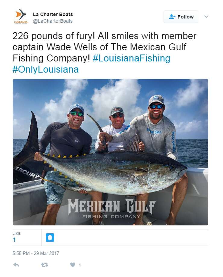 Monstrous yellowfin tuna caught in gulf of mexico san for Texas gulf coast fishing