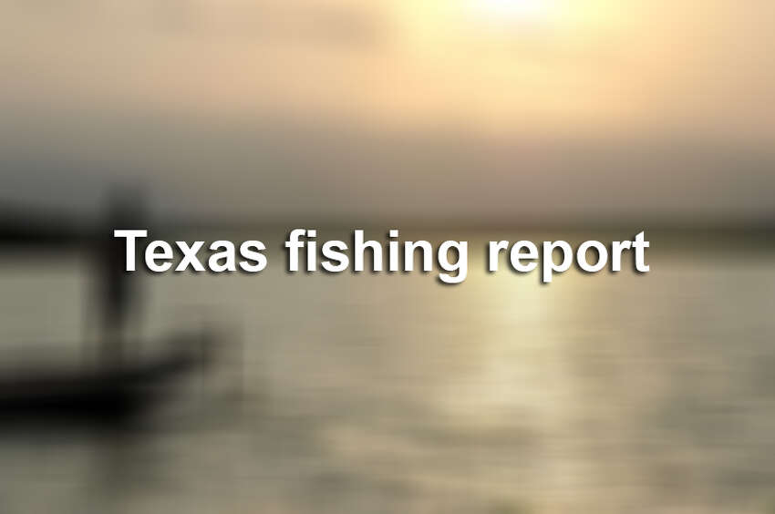 Here is the weekly fishing report as compiled by the Texas Parks & Wildlife Department for the weekend of Oct. 11, 2019.