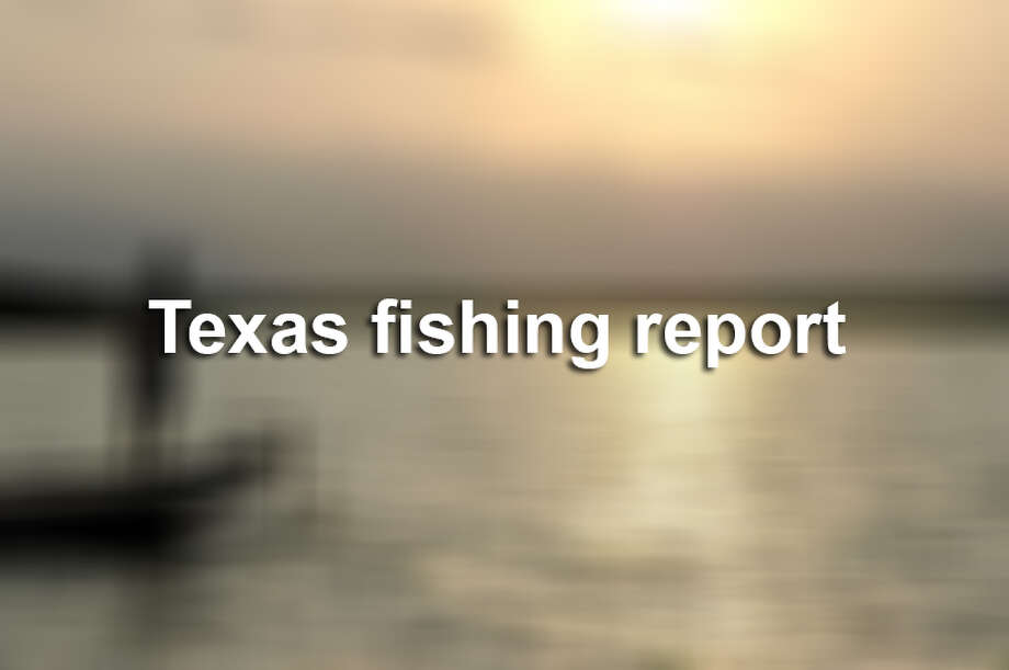 Here is the weekly fishing report as compiled by the Texas Parks & Wildlife Department for March 31, 2017.
