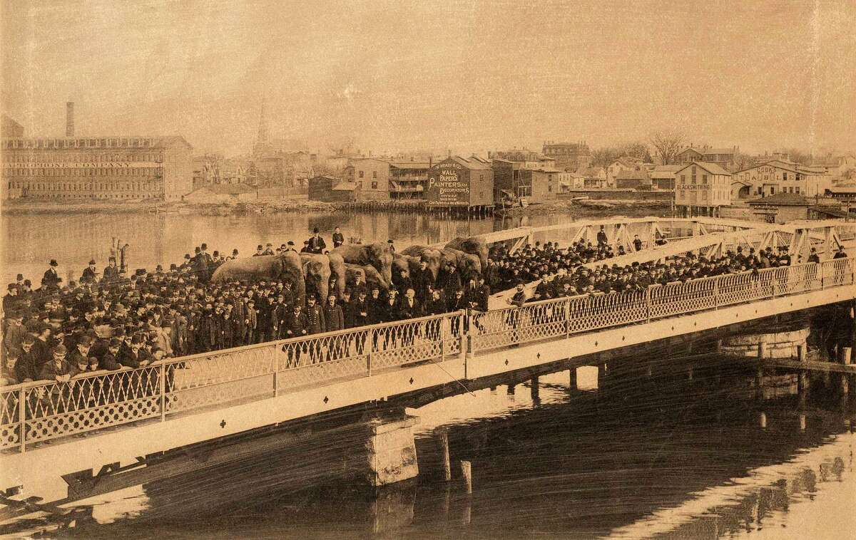 Photograph of Barnum's elephants amid a large crowd of people, testing the pivot-span of the newly constructed