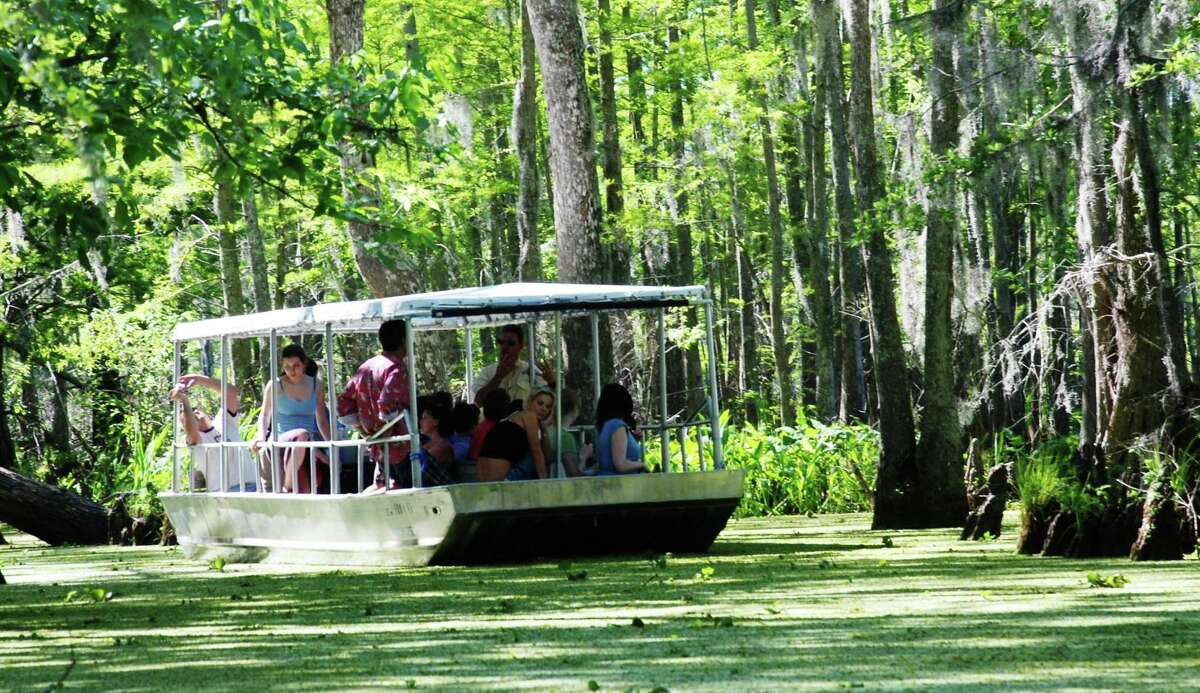 A swamp tour lets visitors to Louisiana's North Shore get close to nature.