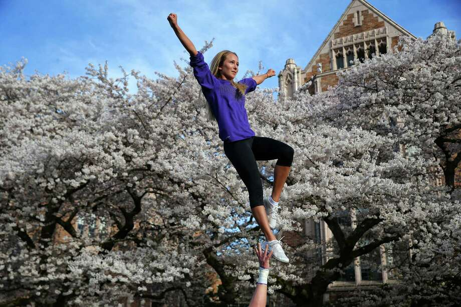 Jake Volk holds up Veronica Stulz, both UW cheerleaders, as thousands of people were out Friday afternoon admiring the blooming cherry blossoms on the quad at the University of Washington, March 31, 2017. Photo: GENNA MARTIN, SEATTLEPI.COM / SEATTLEPI.COM