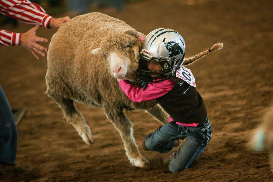 Polly Pratt clings to her sheep in the Mutton Bustin' event of the junior rodeo on March 31, 2017, at the Montgomery County Fairgrounds. Photo: Michael Minasi, Staff Photographer / © 2017 Houston Chronicle