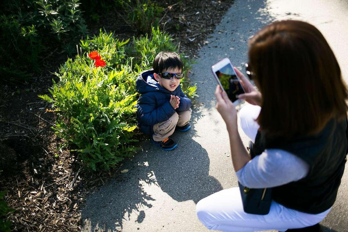Nikki Cantillan, photographs her 4-year-old son, Lance Cantillan at the Botanical Garden in San Francisco, Calif. Saturday, April 1, 2017.