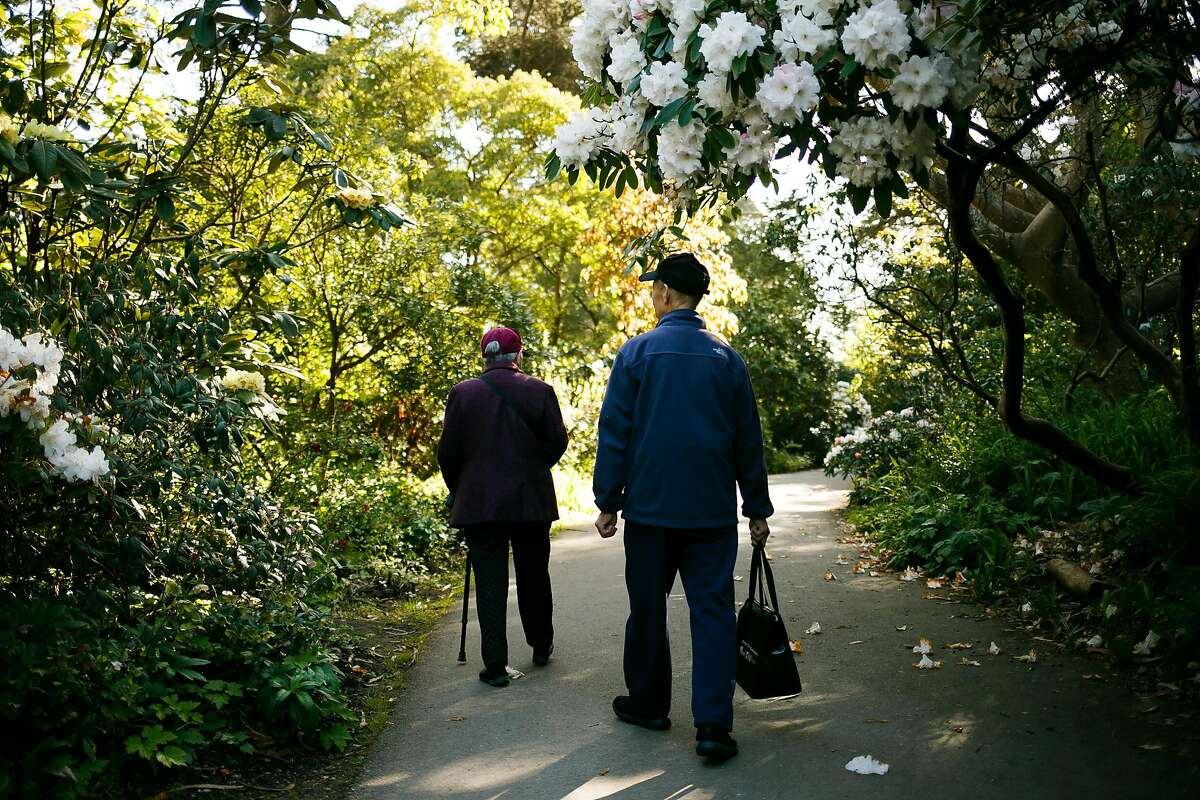 Spectators admire the Rhododendron Garden area at the Botanical Garden in San Francisco, Calif. Saturday, April 1, 2017.