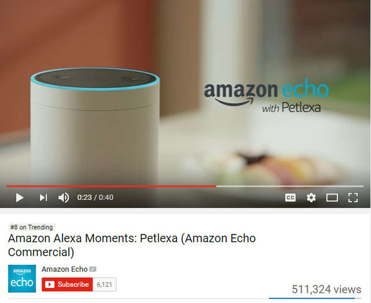 Amazon: The company introduced Petlexa, an upgrade to their AI technology, Alexa. Petlexa lets your pets communicate with Alexa, allowing them the freedom to make orders and requests just like people.