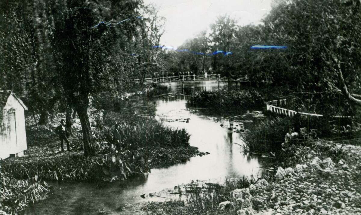San Pedro Springs, circa 1869. The cool, clear waters of San Pedro Springs have nourished this community for thousands of years. When flowing vigorously, the springs fed a variety of plant life, including water lilies.