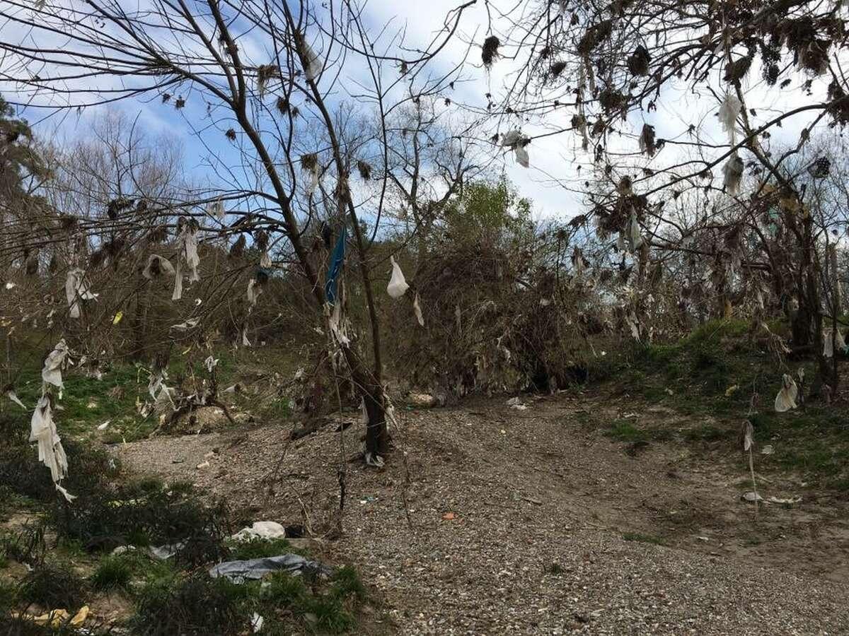 Plastic bags litter Little White Oak Bayou in Woodland Park.