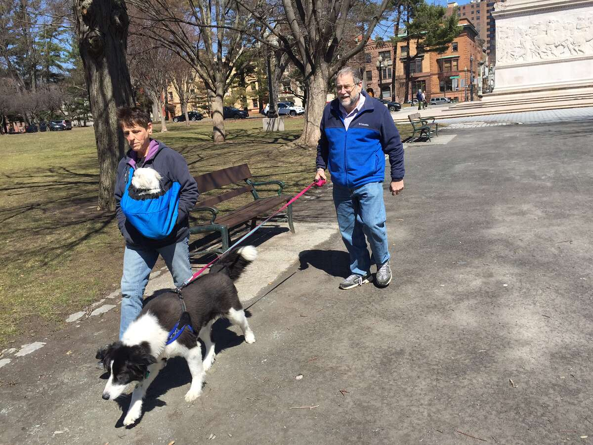 Dr. Allen Carl walks Nellie, a border collie mix, while his wife, Susan Ross, carries Stanley the Maltese in a sling on Sunday, April 2, 2017, in Albany's Washington Park. (Paul Grondahl/Special to the Times Union)